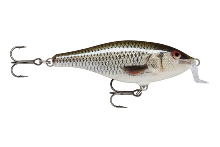 Rapala Shad Rap Shallow Runner ROL - Live Roach