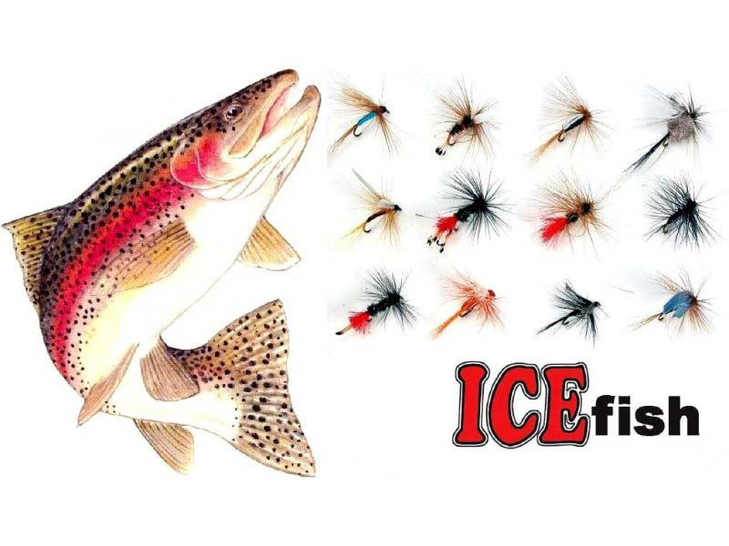 Sada mušek ICE fish - FLY 12ks