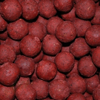 Carp Inferno Boilies Ocean Food 250g/20mm/Salmon Spice