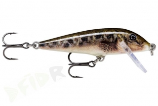 Wobler Rapala Count Down Sinking 7cm - 8g / SCPL