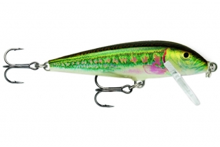 Wobler Rapala CountDown Sinking 7cm - 8g / MN